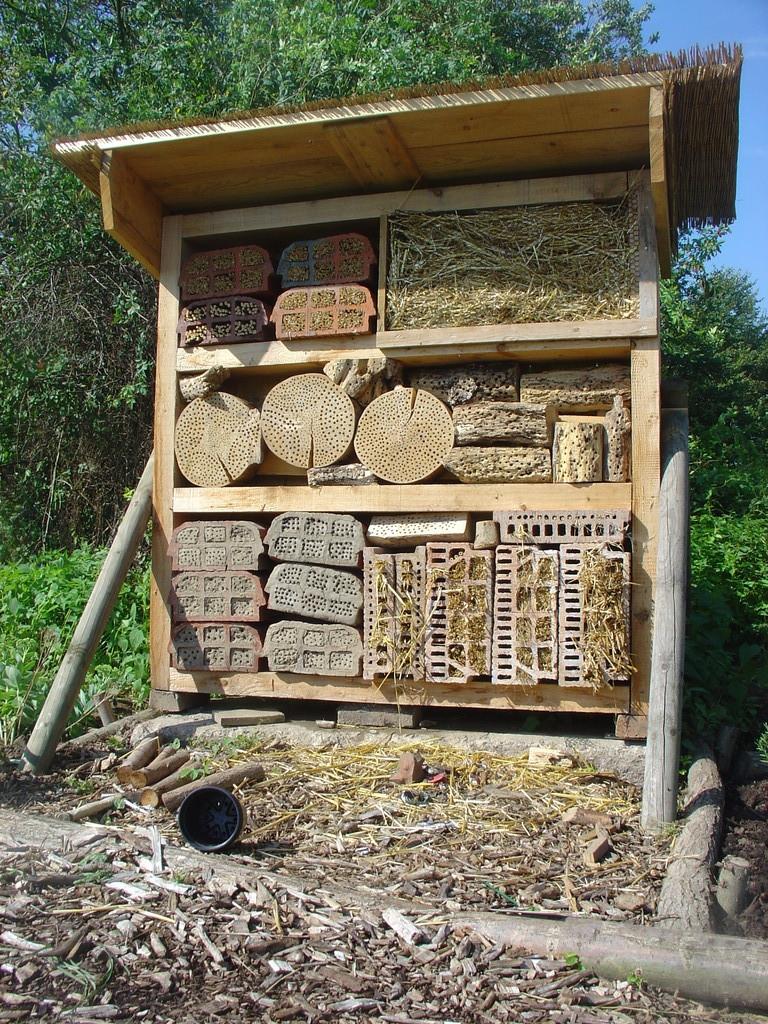Quartier für Insekten