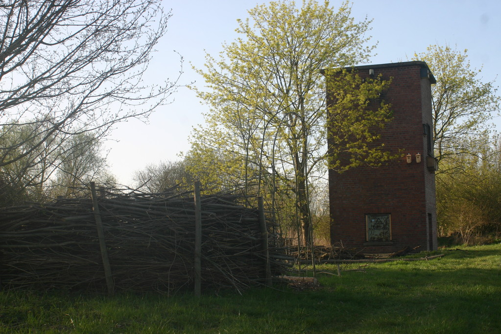 """Am Trafoturm der ehemaligen Ziegelei am Bohlenweg in Brakel entsteht der kleine Naturlehrpfad """"Naturschutz im Garten"""""""