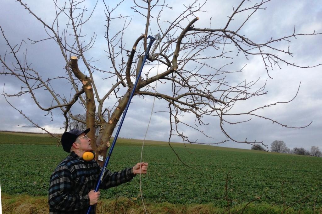 Jürgen Kräutle kümmerte sich um die neugepflanzten Bäume