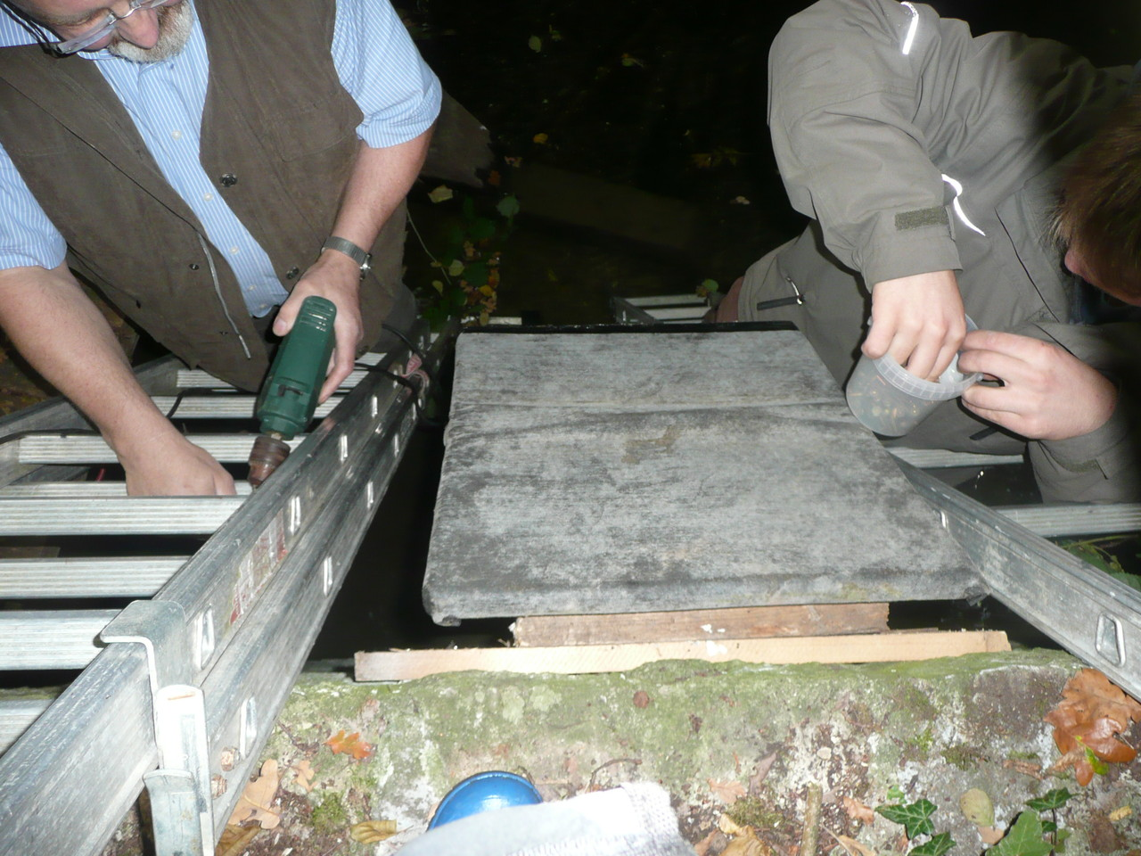 Die Montage erfolgt im Team von zwei im Wasser stehenden Leitern aus / Foto: L. Singer
