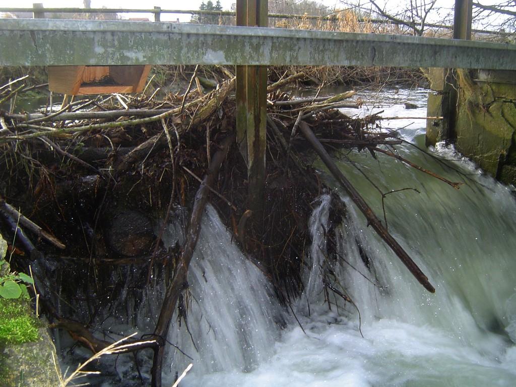 ... und an geeigneten Bauwerken direkt über dem Wasser angebracht! / Foto: D. Singer
