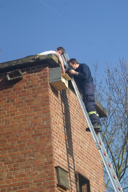Anbringen des Turmfalkenkastens am Trafoturm - in Zusammenarbeit mit der Freiwilligen Feuerwehr Brakel