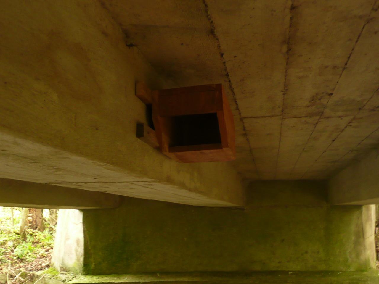 Ein weiterer künstlicher Nistplatz für die Wasseramsel unter einer Betonbrücke ist geschaffen, zuvor hatten die Vögel hier keine Chance ein Nest zu bauen aufgrund fehlender Unterlage / Foto: D. Singer