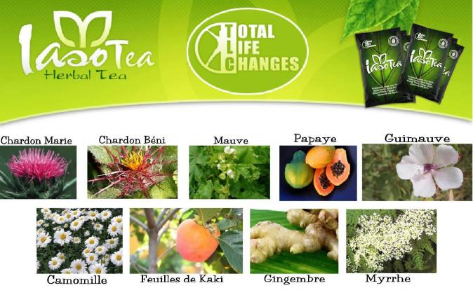 9 plantes pour le Iaso Thé