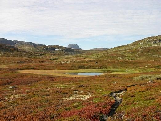 Wildnis Hardangervidda