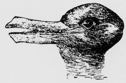 Die Pespektive entscheidet: Ente oder Hase? (Bildquelle: uni-paderborn.de)