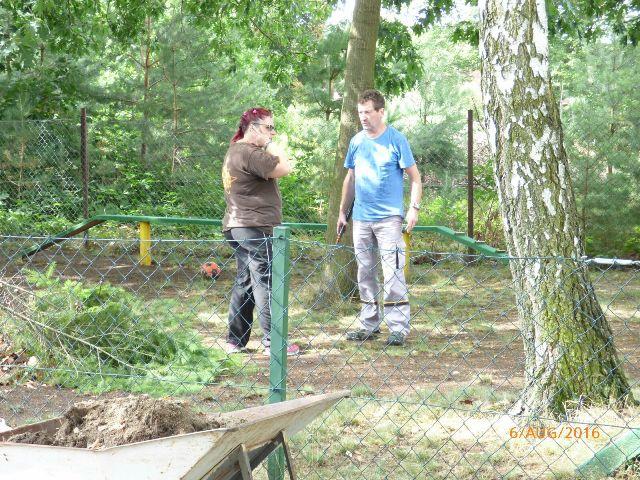 Absprache beim Baumverschnitt