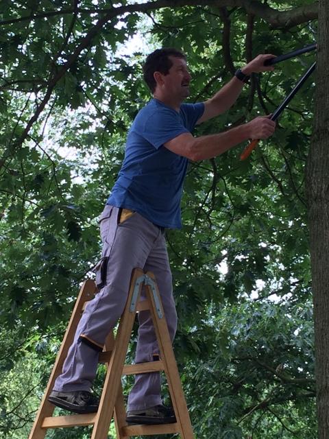 Auf die Bäume, ihr Affen ...