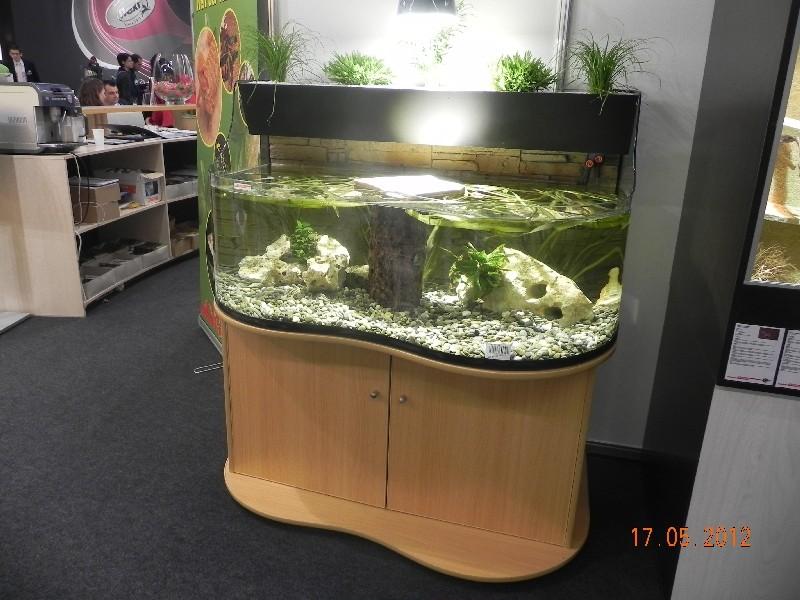 Schildkrötenbecken