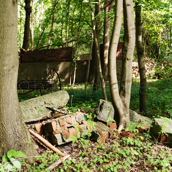 b. Natur- und Geschichtslehrpfad, Hüttenbusch