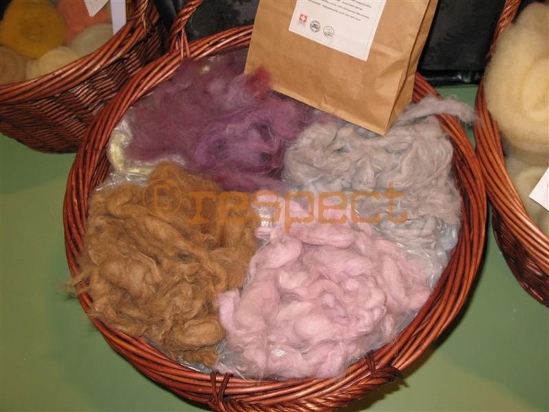 gefärbte samojedenwolle