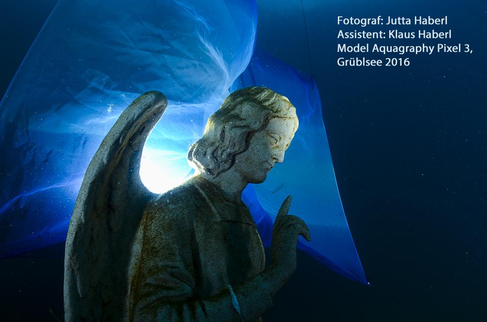 (C) Jutta Haberl