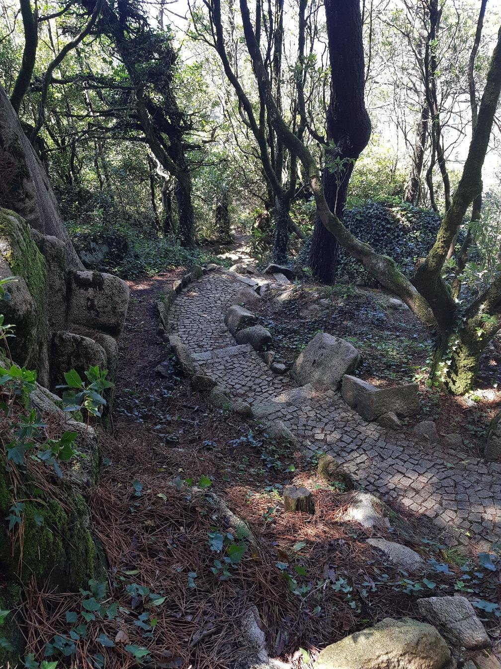 Durch den Park führen viele verschlungene Wege. Garnicht so einfach immer den richtigen zu finden.