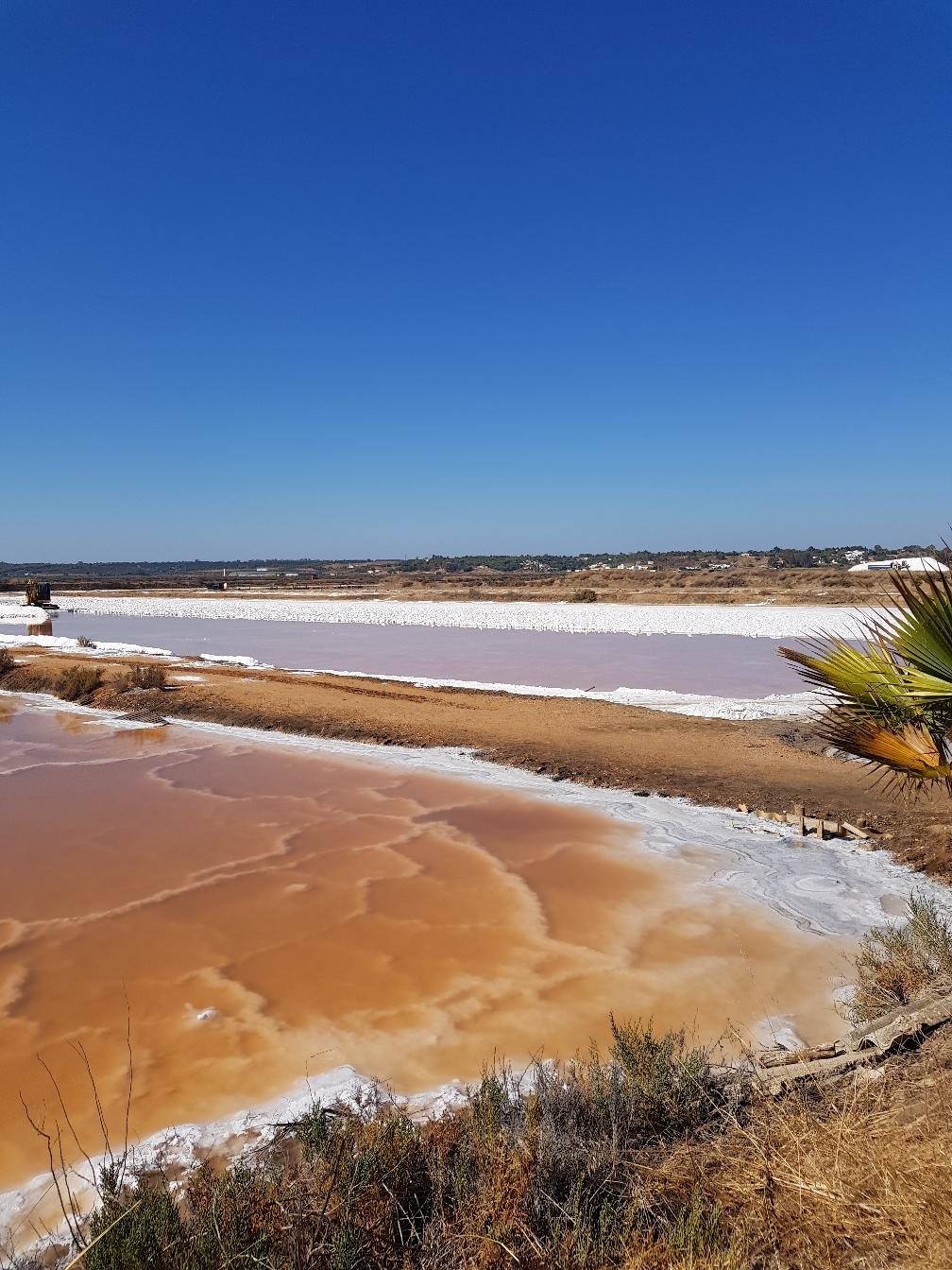 Salina Biomaris, die einzige andalusische Saline, bei der das Salz zu 100% per Hand und natürlich abgebaut wird