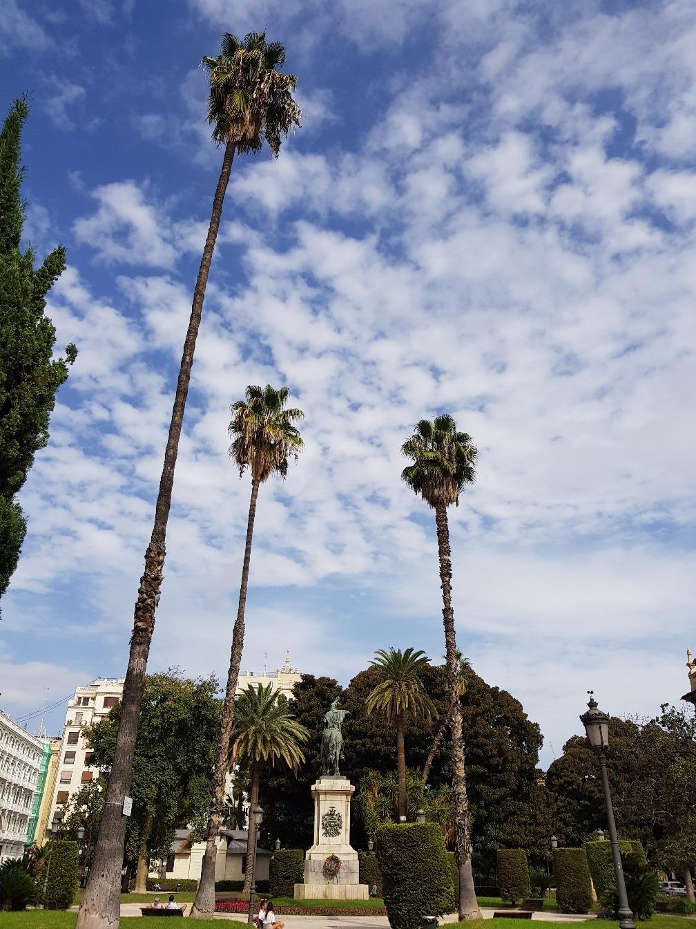 Palmen haben doch gleich etwas von Urlaub