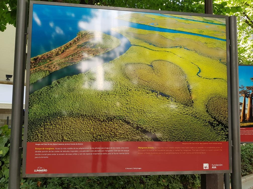 Entlang der voherigen Promenade gibt es eine Ausstellung über die Wälder Andalusiens und die Waldbrandgefahr