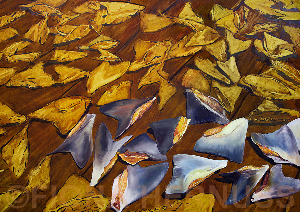 """Stop Finning"" 