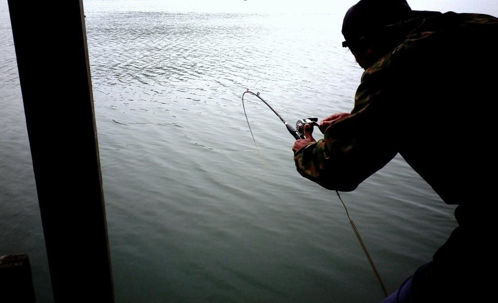 もし嫌なことを思い出していても、魚がかかった瞬間に清々しい虚無がたちこめます。