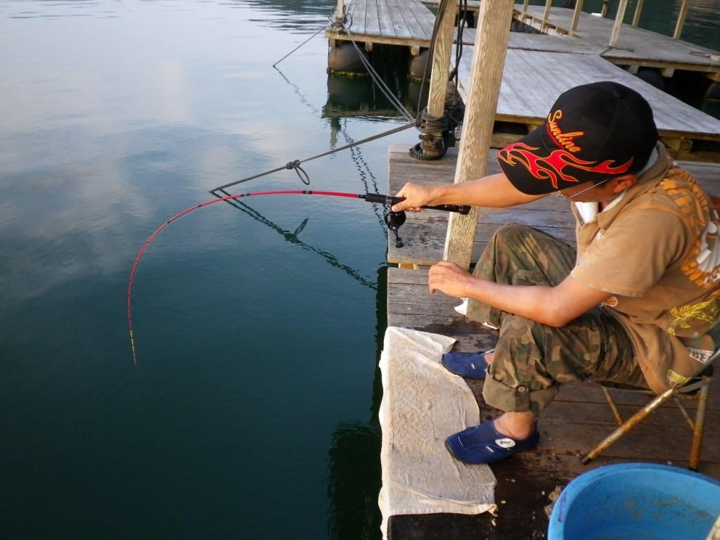 かかったですね、重そうです!バラすかもしれない?しかしながら魚とのやりとりは至福のひとときですね!
