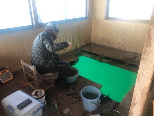 雰囲気換えて室内釣り、浦ノ内の筏の特徴です。