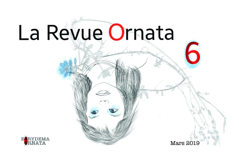 Ornata n°6, Revue de 68 pages éditée à 150 exemplaires numérotés, 14.8x21cm, Eurydema Ornata Editions, 2019