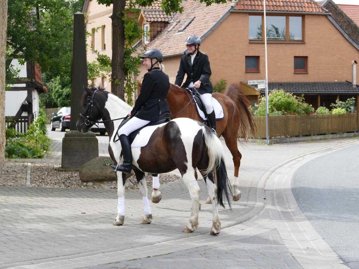 Spalierstehen mit unseren Pferden