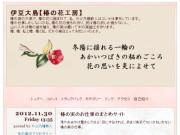 ブログ・椿の花工房