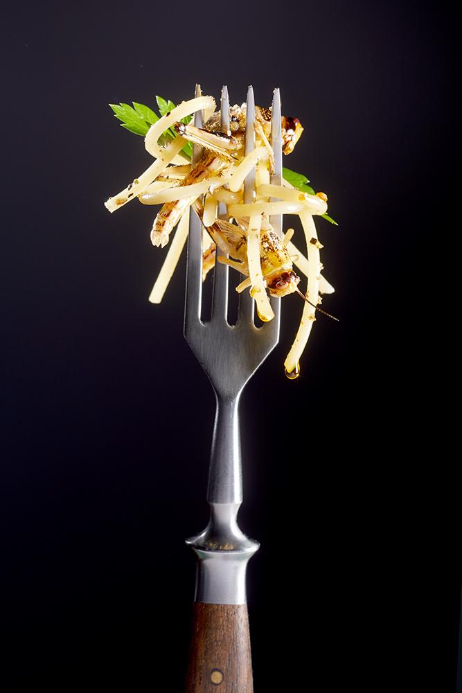 Gabel Heuschrecken,essbare Insekten Food mit Spaghetti auf Gabel