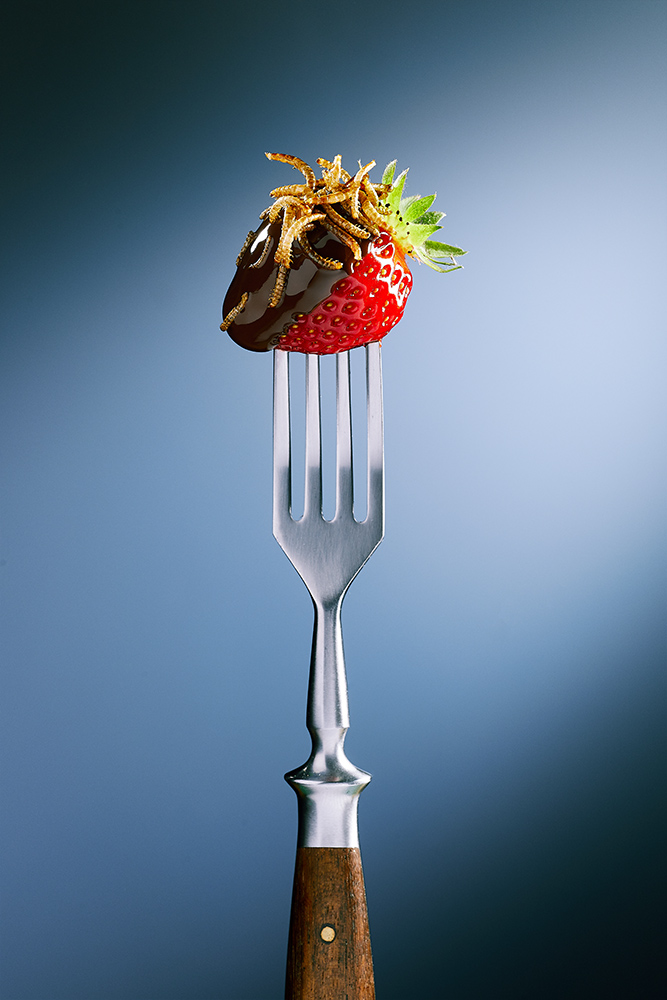 Erdbeere mit Buffalo Würmer auf Gabel gespießt. Ein süßer, verführerischer Insekten Snack