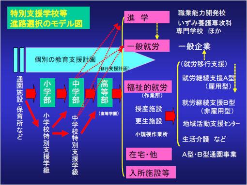 特別支援学校進路選択モデル図