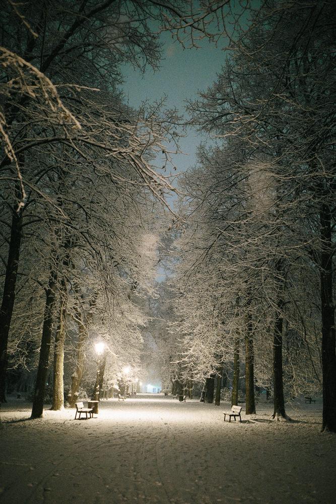 Magdeburg bei Nacht und Nebel, Thomas Sasse, Fotograf, Nordpark Friedhof