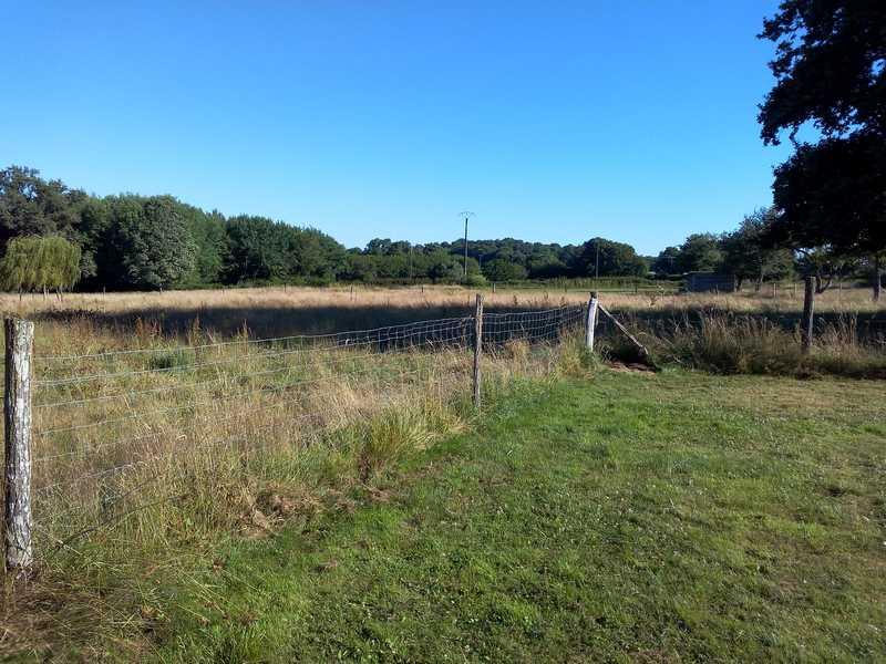 Terrain d'entraînement pour la chasse et le pistage