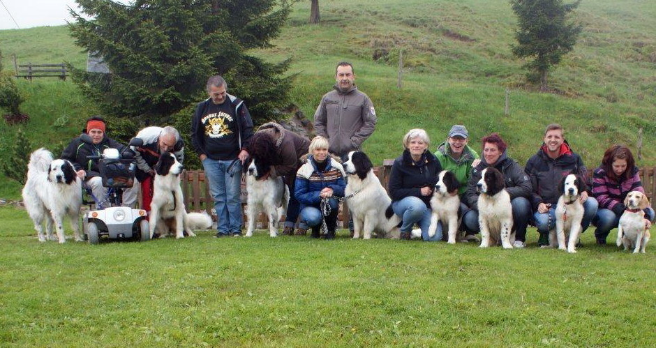 Landseer Lucky Giants Familien-Treffen Mai 2014