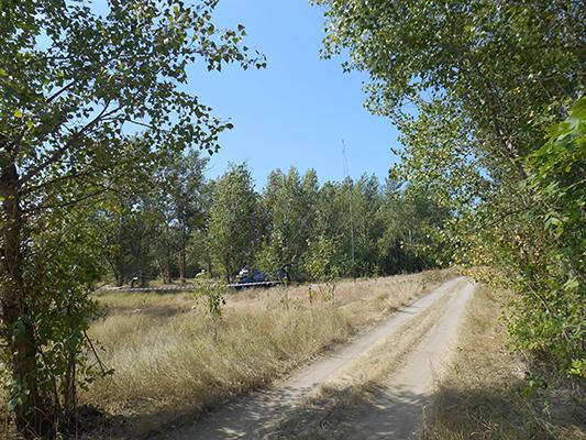 Лагерь меж двух проселочных дорог