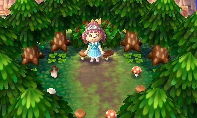 Ac Sonderausgabe Am 01 03 2017 Animal Crossing New Leaf