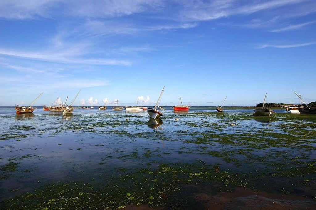 Malindi. Vista del porto.