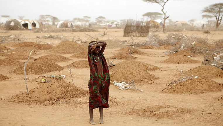 Carcasse di animali, morti per mancanza d'acqua, giacciono sotto mucchi di terra