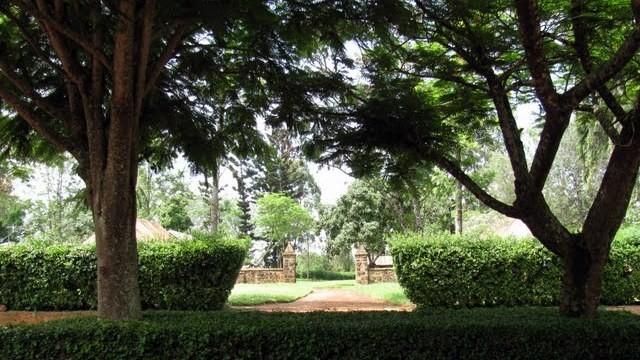 Castello MacMillan-Vista dei giardini (dal salotto delle feste)
