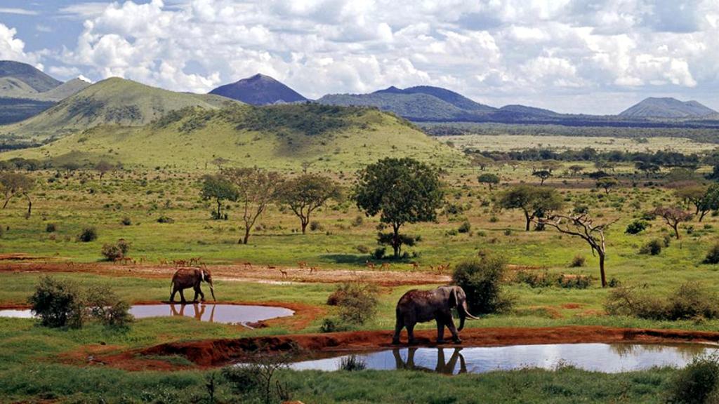 Kenya-Parco Nazionale Tsavo Est