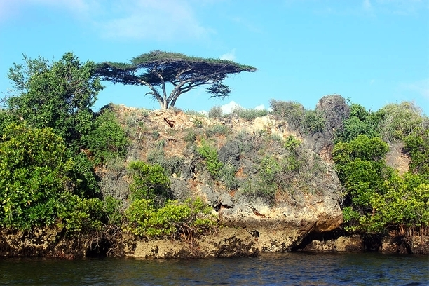 Takwa Ruins Sea