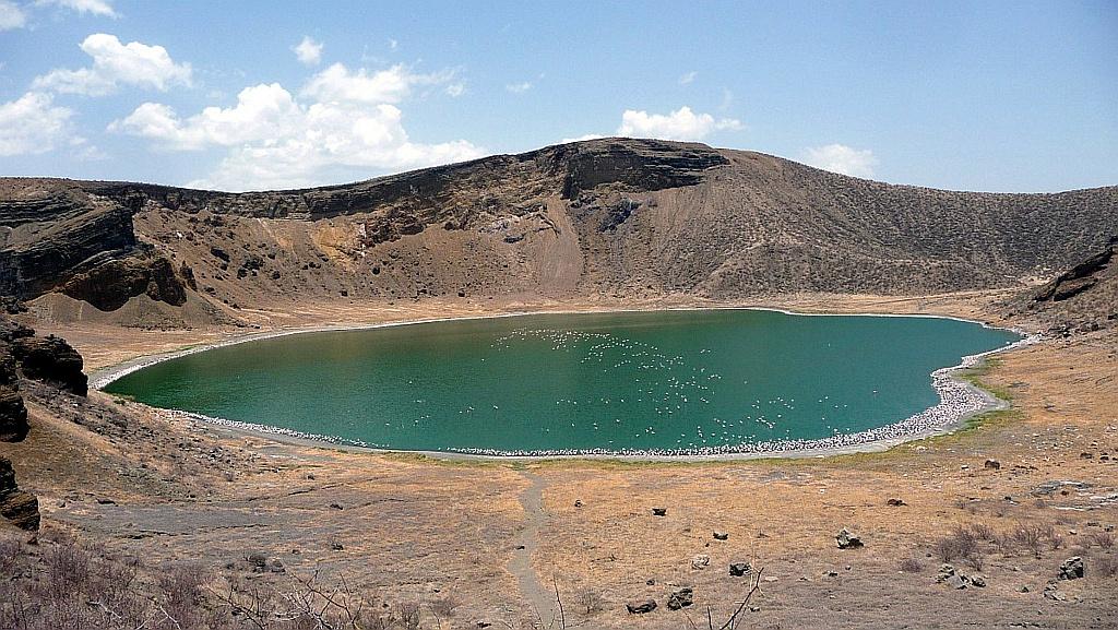 Lago Flamingo, Isola Centrale Lago Turkana Kenya