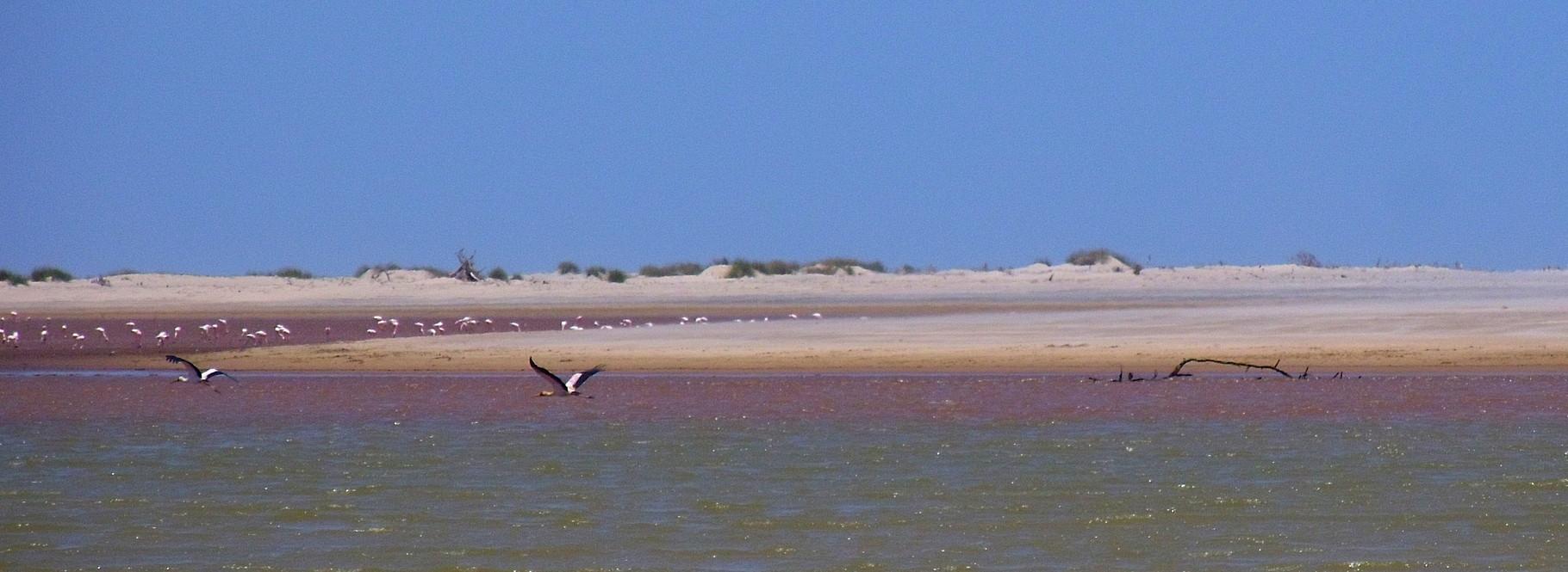 Foce fiume Sabaki