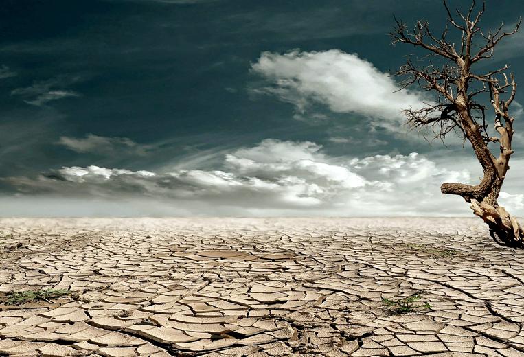 Zimbawe piegato dalla siccità. La metà della popolazione rischia di morire di fame