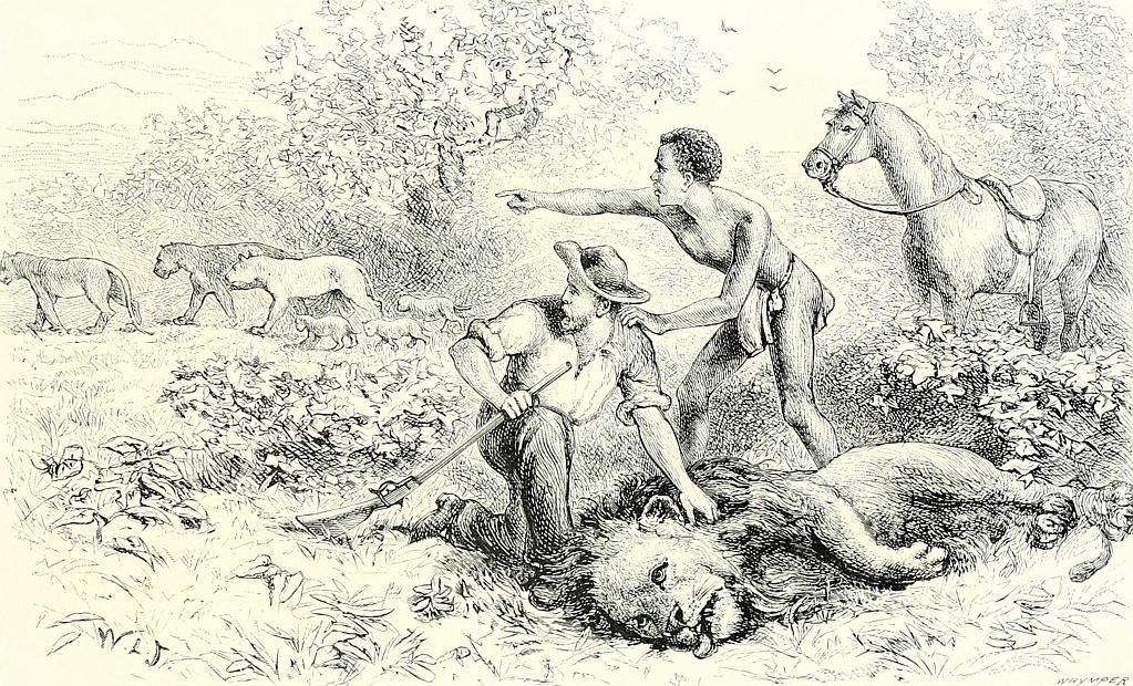 Incontro con i leoni - Mashonaland 16 luglio 1880