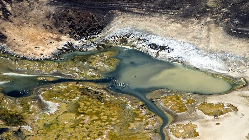 Kenya. Lago Logipi e fenicotteri. Acqua colorata all'estremità settentrionale del lago