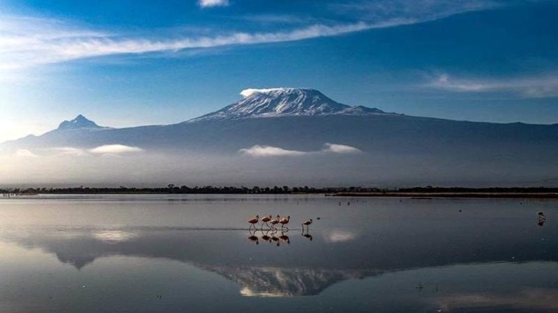 Kenya. Parco Amboseli. Quando l'immobilità porta pace e chiarezza