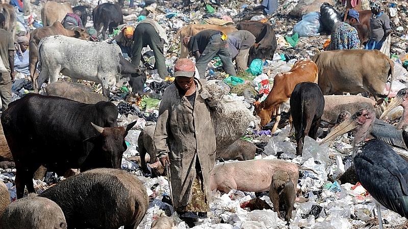 Kenya. La discarica di Dandora - Nairobi