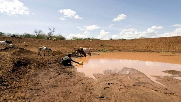 """Donna Pokot raccoglie l'acqua da una """"pozza"""" vicino a Tangulbei, Kenya. Gli abitanti lamentano che l'acqua ha il sapore di urina di vacca."""