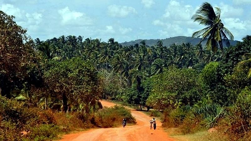 Kenya. Nei pressi di Kaloleni