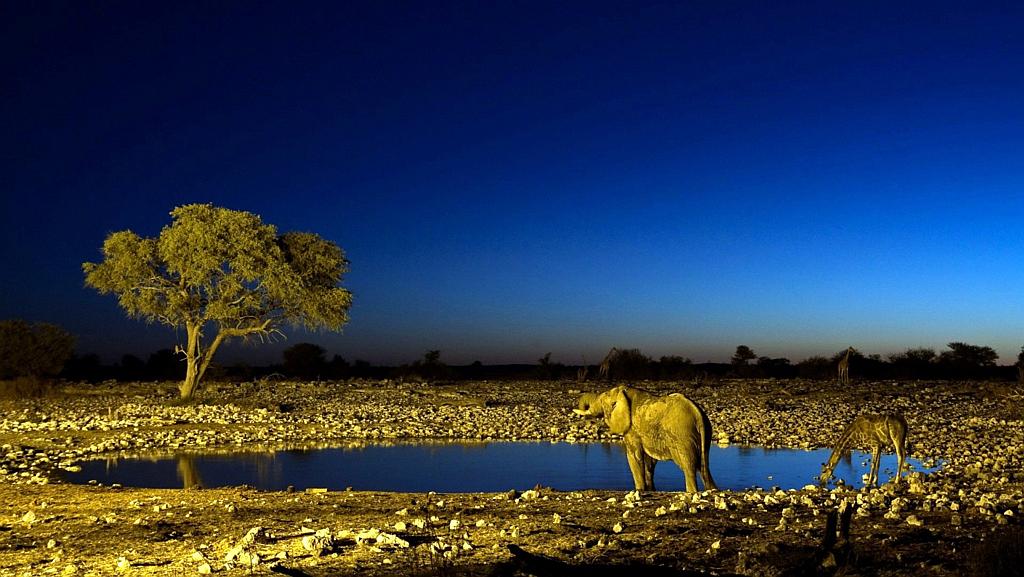 Kenya Vacanze - Panoramica notturna savana